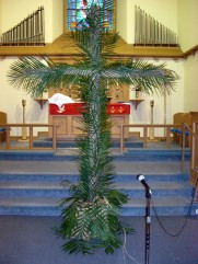Cross of Palms