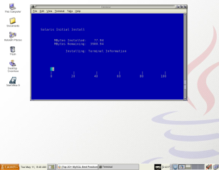 UglyDuckling's Desktop with a GNOME Terminal window containing a tip hardwire connection to HomelyGosling's console port.