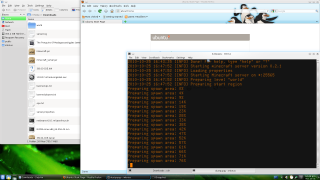 Watching the server log
